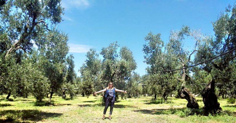 in Puglia con Fabiana De Nicola alla ricerca di olio extravergine di oliva di alta qualità
